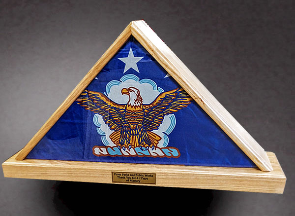 Case for an Air Force Flag